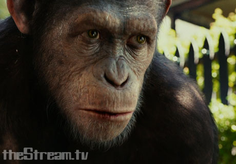Rise of the Planet of the Apes Writers/Producers