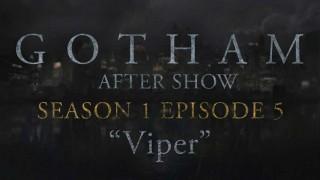 "Gotham After Show Season 1 Episode 5 ""Viper"""