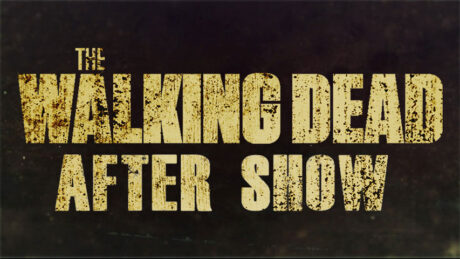 The Walking Dead After Show