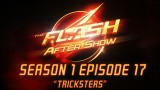 "The Flash Season 1 Episode 17 Review and After Show ""Tricksters"""