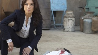 "Agents of S.H.I.E.L.D Season 2 Episode 17 Review and After Show ""Melinda"""